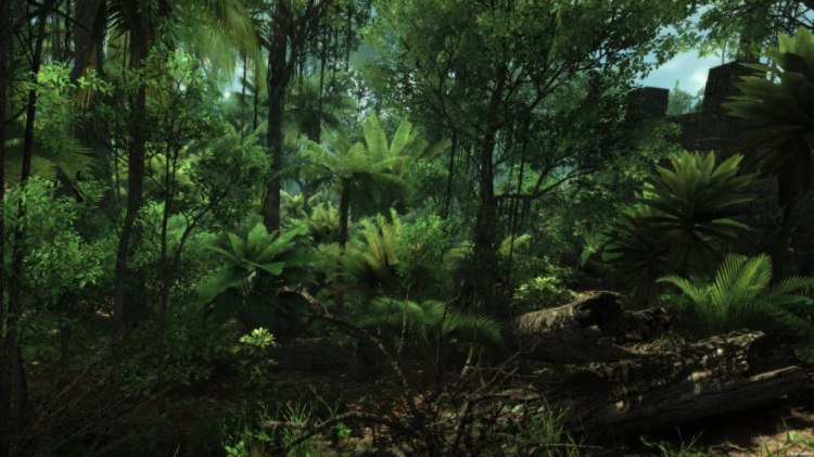 Old screenshot of the Wander rainforest